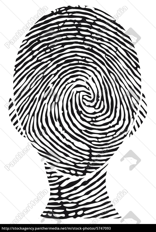 Faszinierend Bild Fingerabdruck Das Beste Von Lizenzfreies 5747093 - Kopf