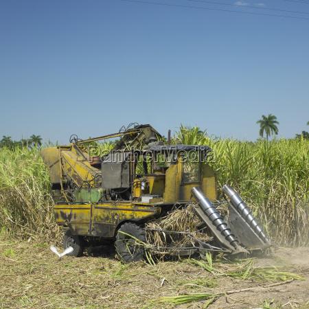 zuckerrohrernte sancti spiritus kuba