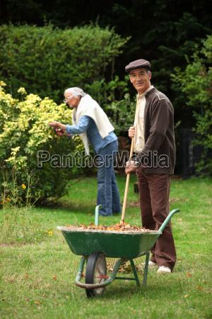 starszy para zbieranie liscie