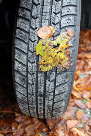 leaves on a winter tire