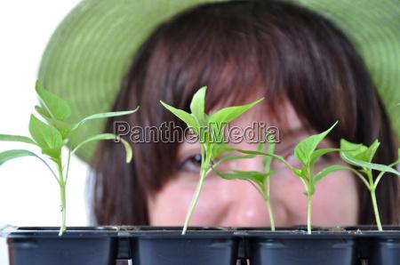 fuersorgliche gaertner nach jungen pflanzen suchen