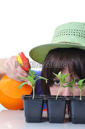 young woman spraying water onto plants