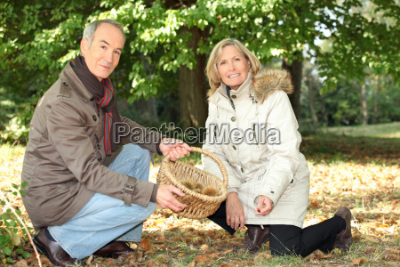 couple gathering chestnuts