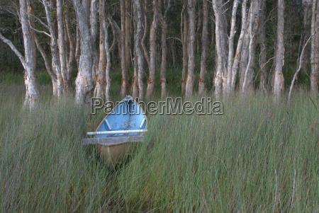 blaues kanu