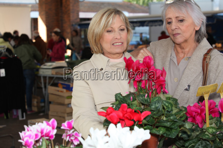 frauen in pflanzen in einem markt
