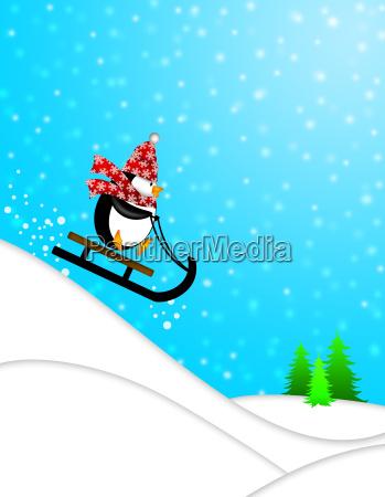 netter pinguin auf schlitten downhill illustration