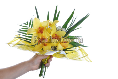 bouquet in hand isolated on white