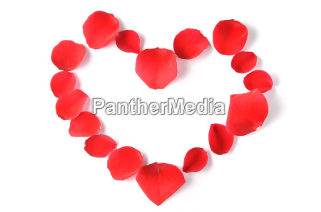 heart made of rose petals isolated