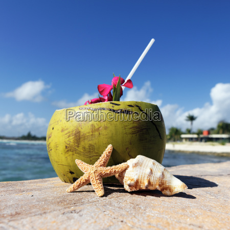 caribbean getraenk