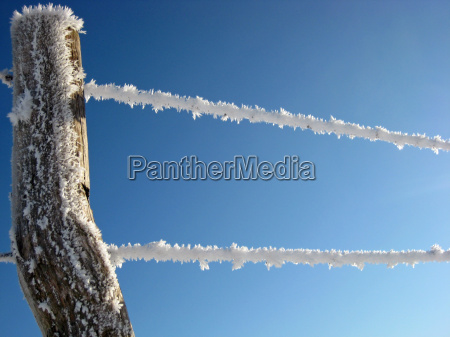 ice frost crystal fence fence in