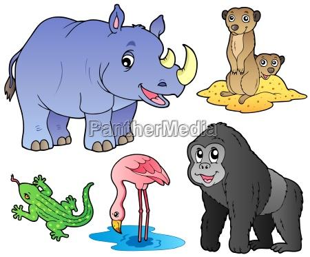 zoo tiere satz 1