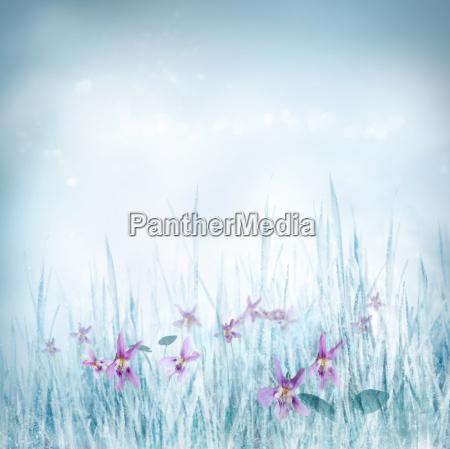 spring floral background with violet flowers