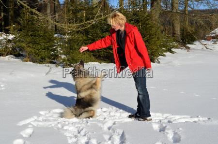frau mit hund im schnee