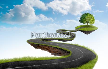 droga do drzewa