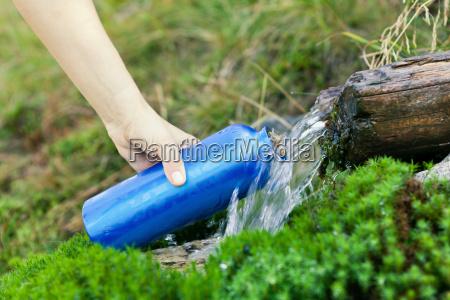 water bottle in green forest