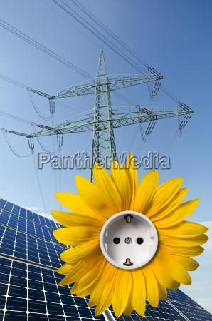 solarmodule sonnenblume mit steckdose und strommast