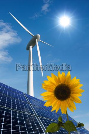 solarmodule windkraftrad und sonnenblume vor sonnigem