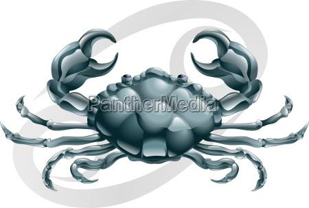 krebs die krabbe sternzeichen