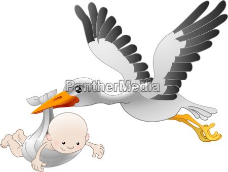 storch liefert ein neugeborenes baby