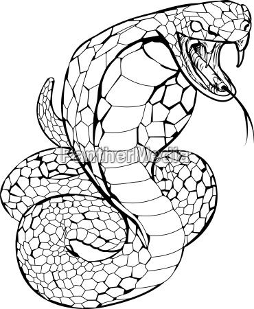 kobraschlangenillustration