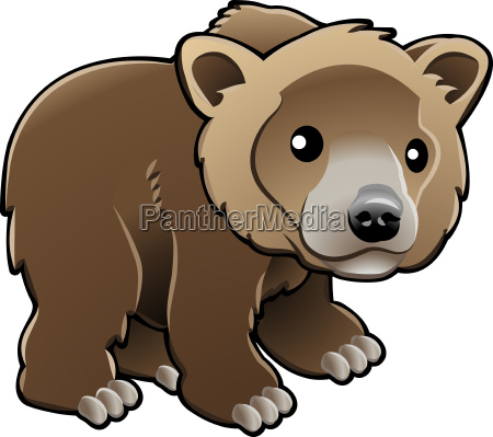 netter grizzly brown bear vector illustration
