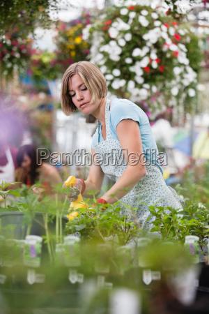 woman spraying water on plants