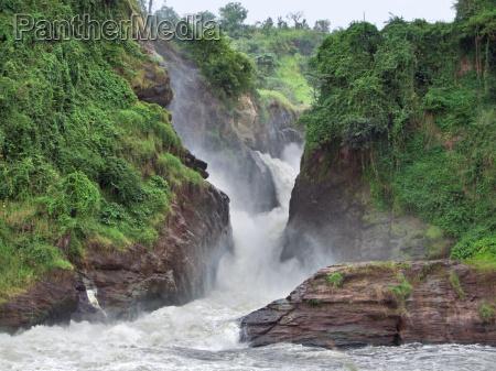 idyllic murchison falls