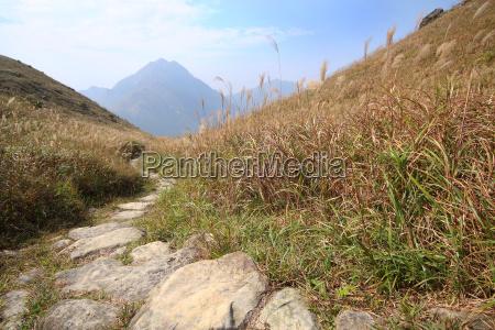 steinweg in den bergen