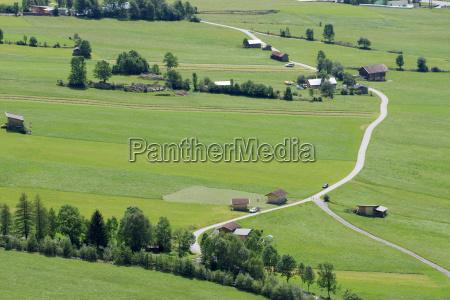 alpine fields