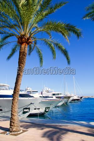 calvia puerto portals nous luxusyachten auf
