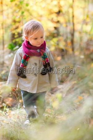 kleinkind maedchen im herbst wald wandern