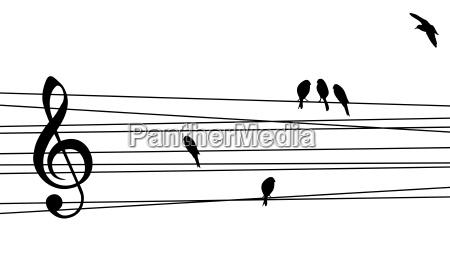 liebe zur musik zusammensetzung