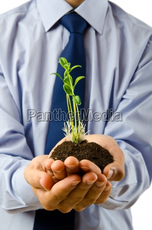 young student holding green seedlings on