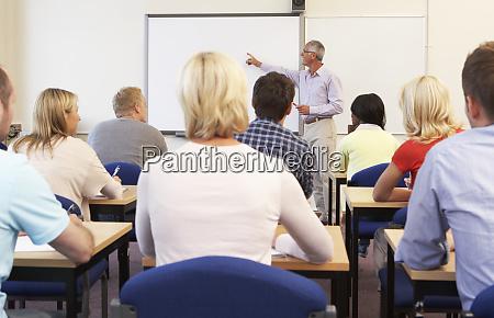 senior tutor lehrklasse