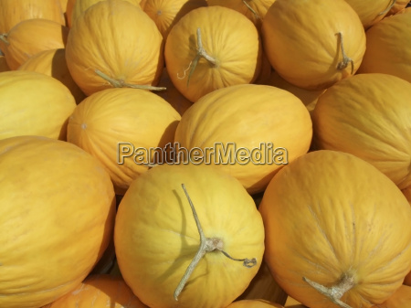 melon background
