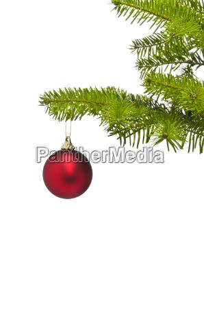 ein roter dekorationsball im weihnachtsbaumast