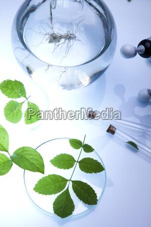 OEkologie labor chemie biologie chemisch biotechnologie