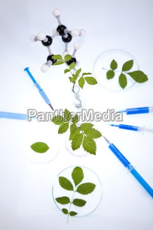 chemistry equipment plants laboratory