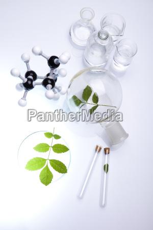 pflanzen und labor