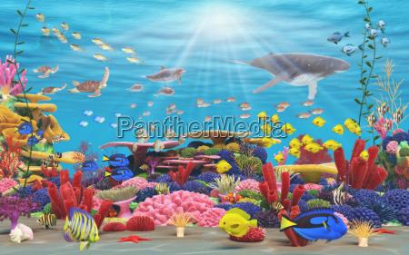 unterwasser paradies