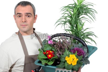 maenner mann freizeit garten blume pflanze