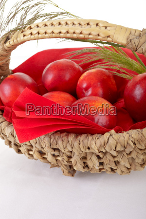 basket of freshly picked red nectarines