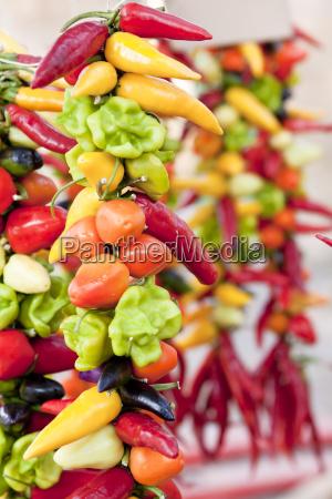 verschiedene gemischte paprika und chili