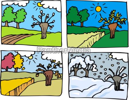 four seasons cartoon illustration