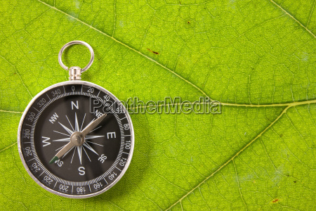 compass on the leaf texture