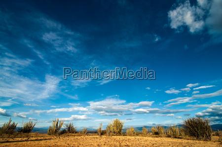 desert and blue sky