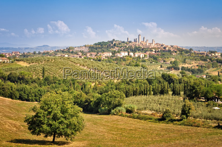 san gimignano village and fields landscape