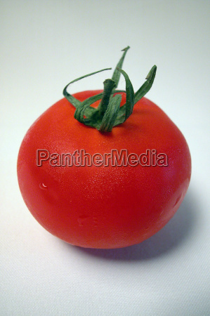 tomaten tomate paradeiser