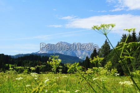 landschaft mit wettersteingebirge