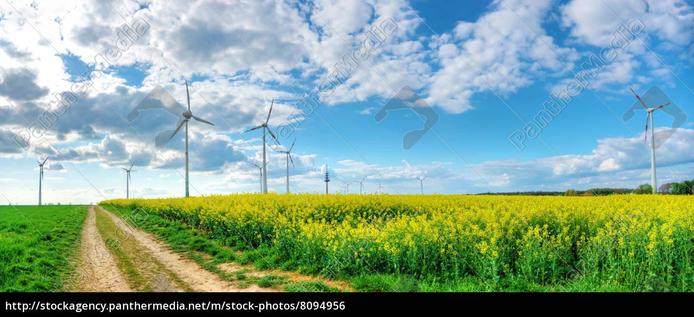 dramatischer, wolkenhimmel, mit, rapsfeld, und, windkraft - 8094956